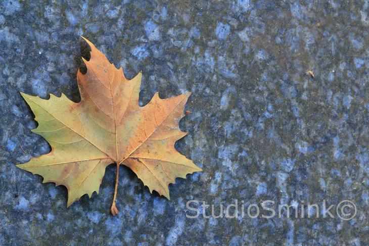 Leaf-Sjors-Smink©